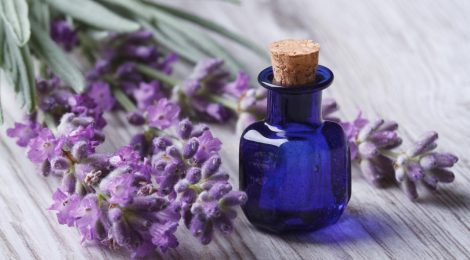Essential oils & why we use them for employee wellbeing at The Vital Touch Barcelona
