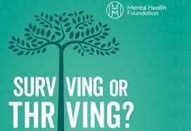 Surviving or Thriving - Mindfulness and the positive effects on your health, mind, brain, body and behaviour.